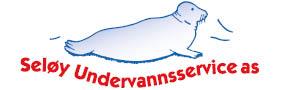 Seloy logo